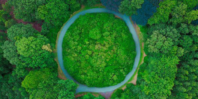 Hector Robles economía circular