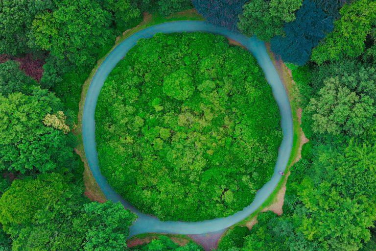 Tu empresa necesita economía circular